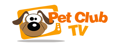 PET CLUB TV